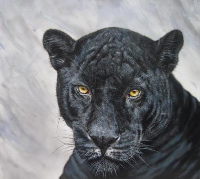 Jaguar - Black Jack