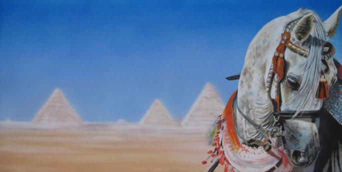 Arab Stallion in the dessert -  Wüstenpferd