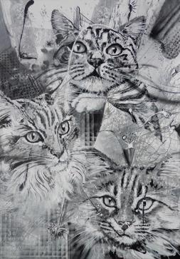 Katzengeister