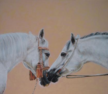 two horses - first contact